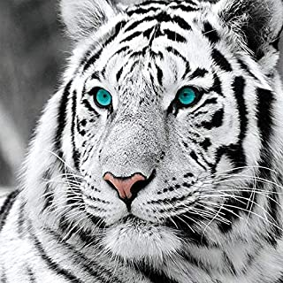Fundaful DIY 5D Diamond Painting Kits for Adults Full Round Drill White Tiger Paint by Number Shiny Rhinestone Embroidery ...