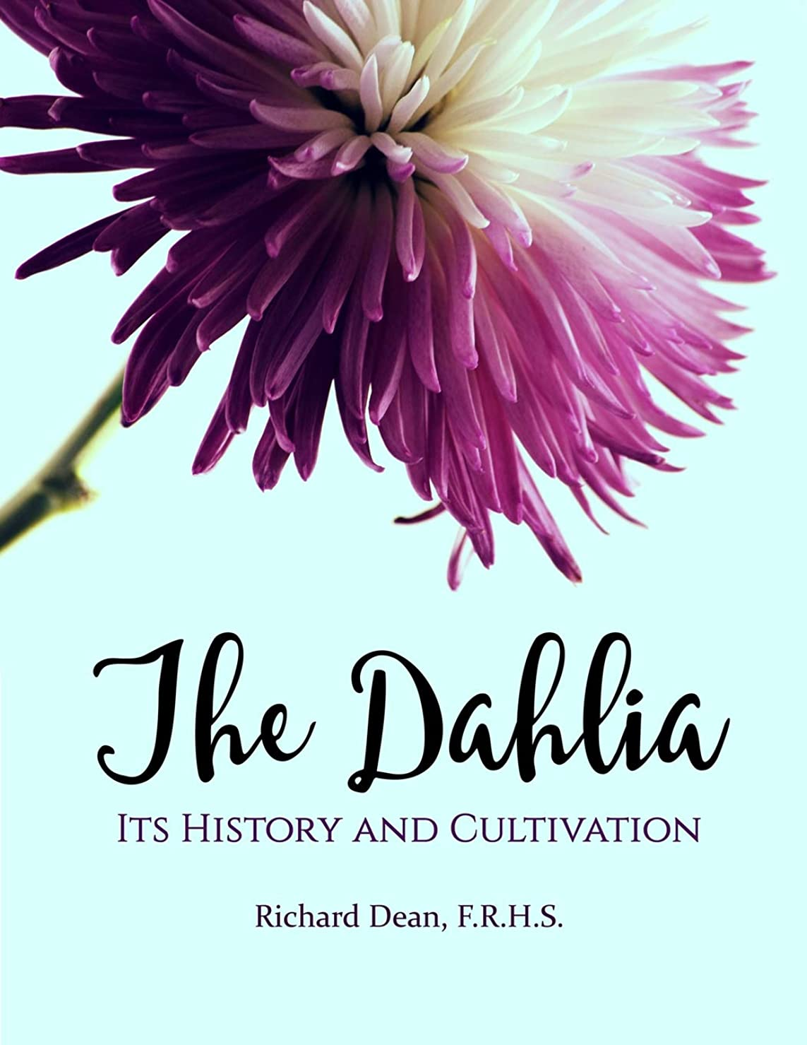 病な種類謙虚なThe Dahlia: Its History and Cultivation