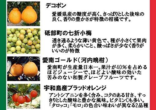 ジェラテリアUNO『愛媛産ジェラート6種類の詰め合わせ』