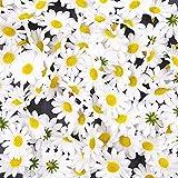 JZK 100 x Lifelike Artisanat Blanc Artificiel Marguerite Tissu Fleurs têtes, La Table de fête de Mariage Diffuse Les confettis, Accessoires de Scrapbooking Bricolage, décorations de Cartes