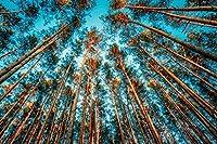 1000ピース木製ジグソーパズル森の風景を見上げる大人子供のゲームおもちゃのストレスリリーフパズル