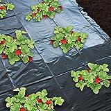 Godmoy Film de paillage pour Fraises et Jardin Fruits Légumes (1.4*10 M)