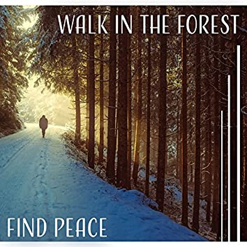 Walk in the Forest: Find Peace – Ambient Serenity for Feeling Better, Sounds Therapy for Tired Mind, Mother Nature