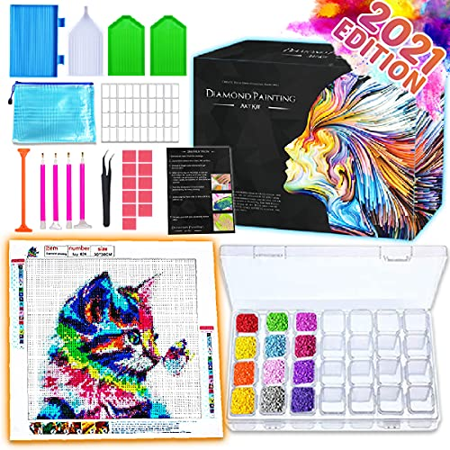 Zoncolor Diamond Painting Kits Tool Box - 5D Diamond Art Painting Accessories Tool Kit Diamond Dotz Ring Dimond Paintings Acceriores Kit with Dimand Art Dimand Dot Crafting Supplies for Adults