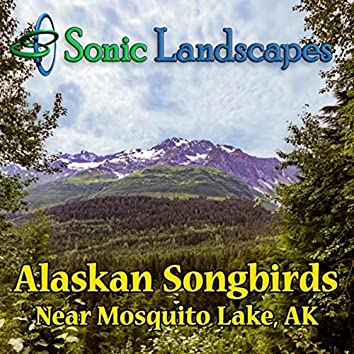 Alaskan Songbirds Near Mosquito Lake, AK
