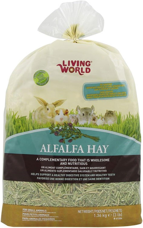 Living World 61204 Alfalfa Hay Extra Large Size, 1.36kg (3Pound)