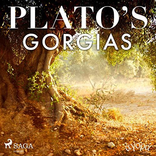 Plato's Gorgias cover art
