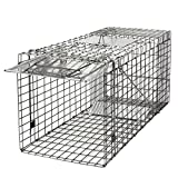 Best Raccoon Traps - JungleA 32 Inches Cage Trap 1-Iron Door Foldable Review