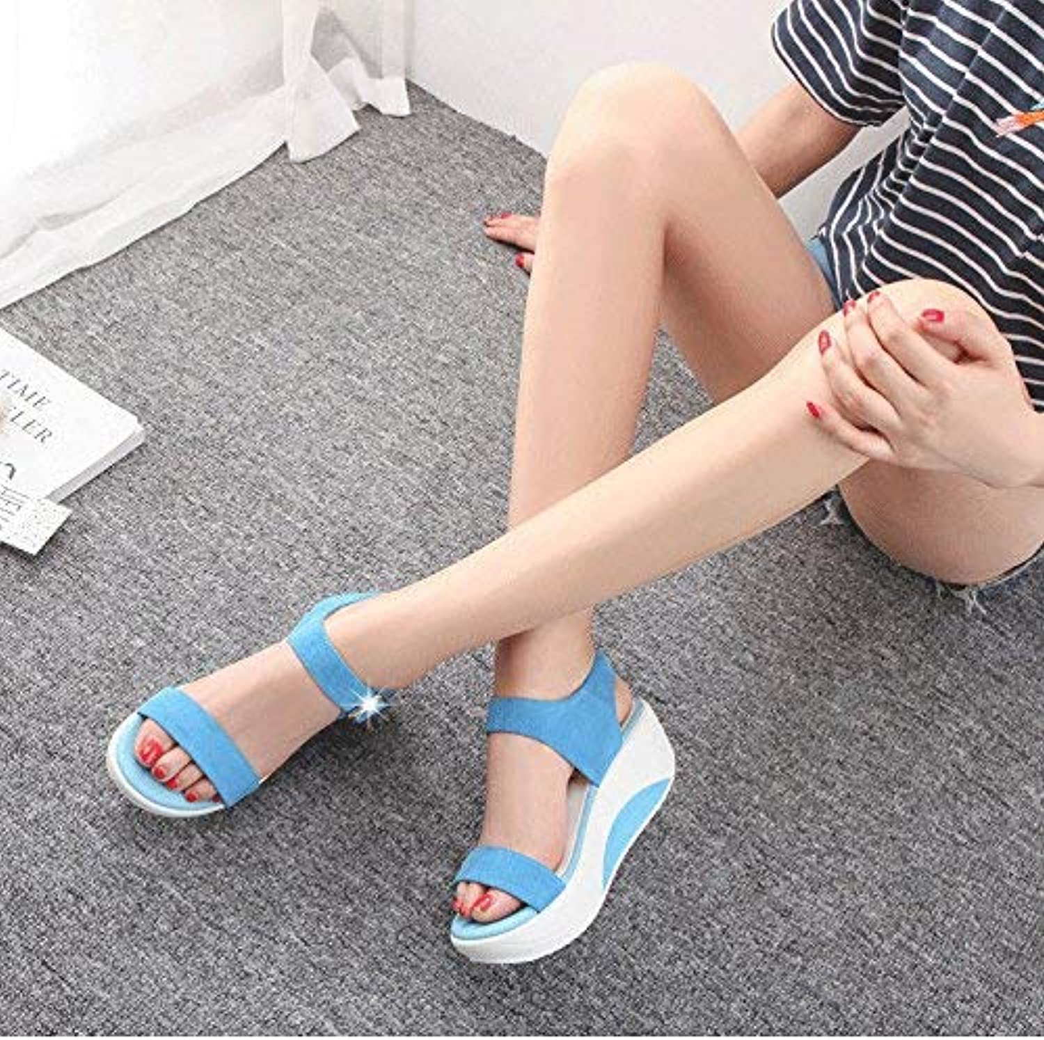 Womens Ladies Sandals Sandals Sloping Heels Flat Sandals Summer Sandals Thirty-Five Sky bluee Summer Holiday Sandals Fashion Sandals
