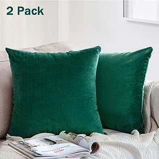 ONTOTL Throw Pillow Covers, Velvet Soft Soild Square Pillow Cover Throw Cushion Case Decorative Pillowcase for Sofa Bedroom Car 18 x 18 Inch 45 x 45 cm (2 Pack,Green)