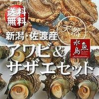 魚水島 「あわび&さざえセット」 新潟産 天然 活アワビ500g+活サザエ120g×10個