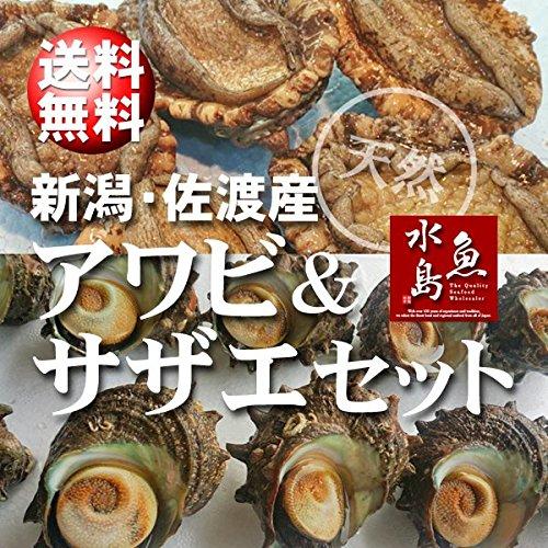 魚水島 「あわび&さざえセット」 新潟産 天然 活アワビ500g+活サザエ100g×10個
