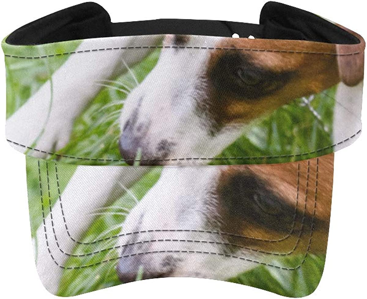 Basics Running Hat Dog Puppy Ball Womens Max 86% OFF with Excellence Soccer