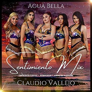 Claudio Vallejo Sentimiento Mix Como Pequeña Florecita / Incomprensión / Tendrás Que Recordarme