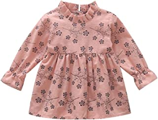 Fairy Baby Toddler Baby Girls Long Sleeve Outfit Floral Ruffle Cute Casual Princess Dress