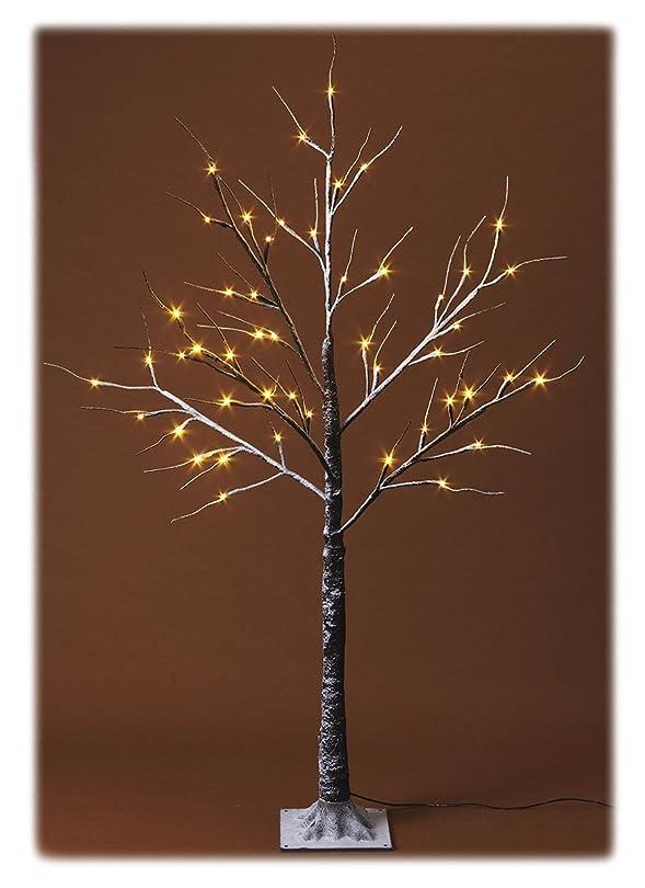 コンベンションウィンク汚いLight クリスマスツリー ブランチツリー M ZYN-0070