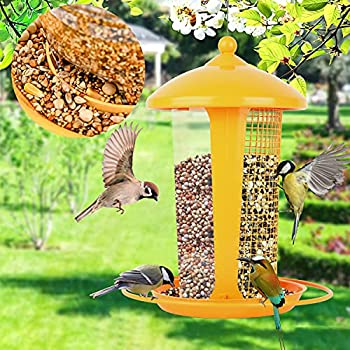 Best anti squirrel bird feeder Reviews