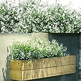 12 Manojos Flores Arbustos Artificiales Plantas Flores Exteriores Resistentes a Rayos UV Arbustos Artificiales Decorativos para Arreglo Floral, Centro de Mesa, Decoración de Cocina Jardín (Blanco)
