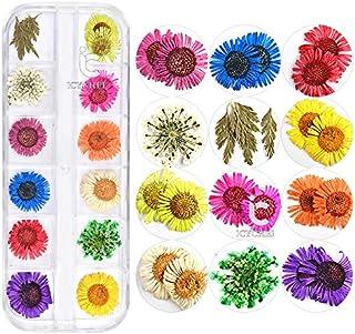 ICYCHEER 3D Ontwerp Echte Gedroogde Bloemen Nail Art Decoratie 12 Stijl Bloemen Nail Art DIY Gereedschap Voor Nail Beauty ...