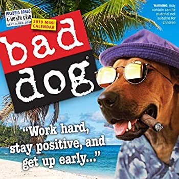 Bad Dog Mini Wall Calendar 2019