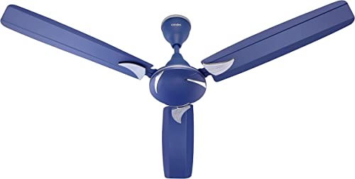 Candes Lynx High Speed Anti dust Decorative 5 Star Rated Ceiling Fan 3 Years Warranty 1200mm Silver Blue Pack of 1