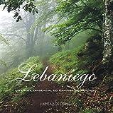 Lebaniego: Uma rota tangencial do Caminho de Santiago (Descobrindo Novos Caminhos Livro 5) (Portuguese Edition)