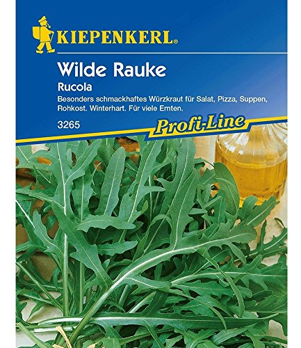 Kiepenkerl Rucola 'Wilde Rauke',1 Portion