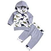 Baby Boy Clothes Dinosaur Top Hoodie + Cute Pants 2Pcs Outfit Set(6-12 Months)