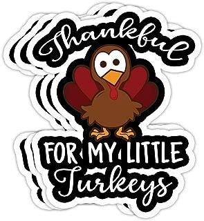 Teachers Thanksgiving Shirt Thankful for My Little Turkeys- 4x3 Vinyl Stickers, Laptop Decal, Water Bottle Sticker (Set of 3)