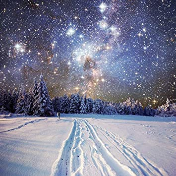 7x7FT Vinyl Wall Photography Backdrop,Night Sky,Mountain Forest with Pine Background for Baby Birthday Party Wedding Studio Props Photography