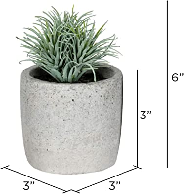 """Vickerman Assorted Potted Succulents Artificial-Plants, 6"""", Green, 4 Piece"""