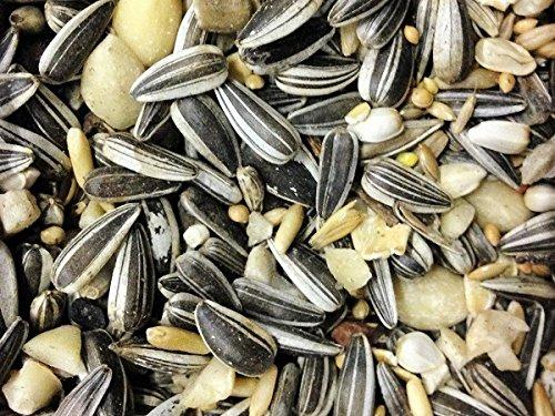 Debes Streufutter Spezial für Wildvögel 15 kg - ohne Milo - ohne Weizen - ohne Mais - Wildvogelfutter