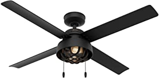 Hunter Spring Mill Indoor / Outdoor Ceiling Fan with LED...