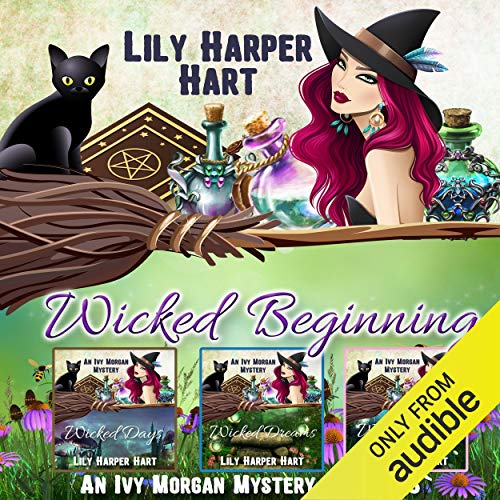 Wicked Beginning audiobook cover art