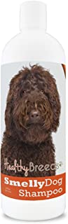 Healthy Breeds Smelly Dog Deodorizing Shampoo & Conditioner with Baking Soda for Labradoodle, Dark Brown - OVER 200 BREEDS...