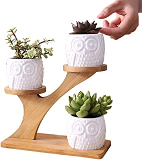 Owl Succulent Pot with 3 Tier Bamboo Saucers Stand, White Modern Decorative Ceramic Flower Plant Pot, Home Office Mini Cac...