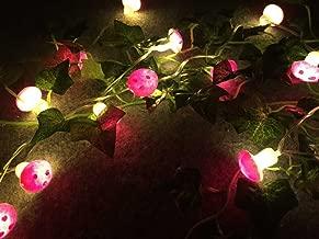 Best mushroom christmas lights Reviews