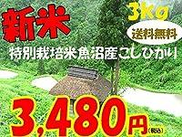平成28年新潟県産特定産地米 (魚沼産特別栽培米3㎏)