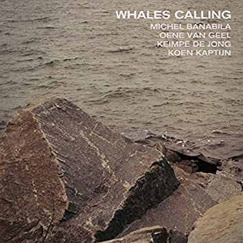 Whales Calling