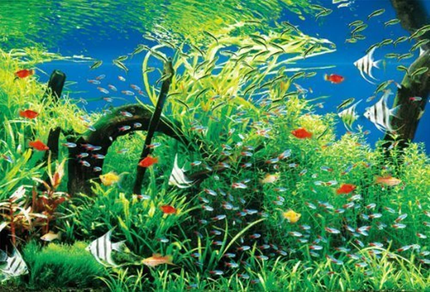 1000 Piece Natural Aquarium 31385 (japan import)