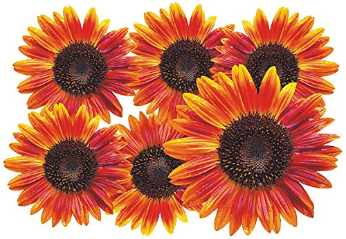 Autoaufkleber, Blumendesign: Flower Set 12-Mini-36 Stück