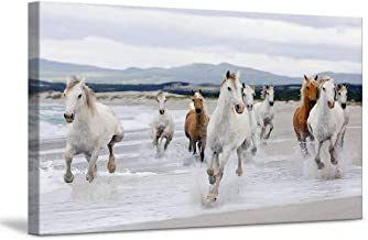 Best running horse painting online Reviews