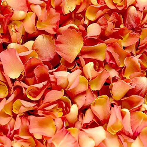 Confeti de pétalos de rosa biodegradable para bodas (Naranja, 2 Litros)