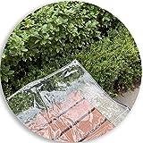 AMSXNOO Abdeckplane Gartenmobel Mit Ösen Gewebeplane Transparent Staubdicht Wasserdicht Reißfest Schutzplane Ideal Witterung Schutz Plane Cover (Color : Klar, Size : 2.4x4m)