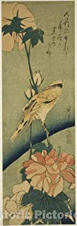 Historic Pictoric Print : Blacked-naped Oriole on Hibiscus, Utagawa Hiroshige, c 1835, Vintage Wall Decor : 08in x 24in