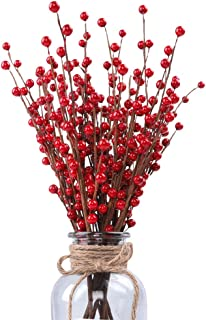 HOLICOLOR 10Pcs Red Berry Stems Artificial Christmas Berries for Flower Arrangements DIY Crafts Party and Christmas Decoration