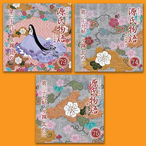 『源氏物語 瀬戸内寂聴 訳 3本セット(二十五)』のカバーアート