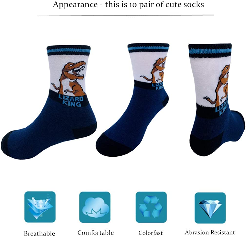 Boys Socks Dinosaur Crew Sock Kids Youth Cotton Socks 10 Pair Pack