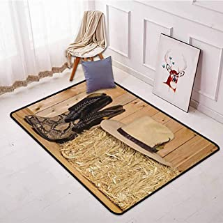 Indoor/Outdoor Rug,Western Decor,Snake Skin Cowboy Boots Timber Planks in Barn with Hay Old West Austin Texas,Anti-Static, Water-Repellent Rugs,4'7
