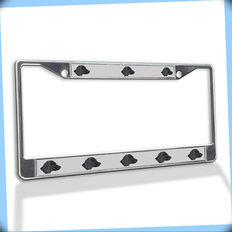 New Metal Novelty Aluminum Alloy Max 73% OFF Vinyl Plate Inser License Super popular specialty store Frame
